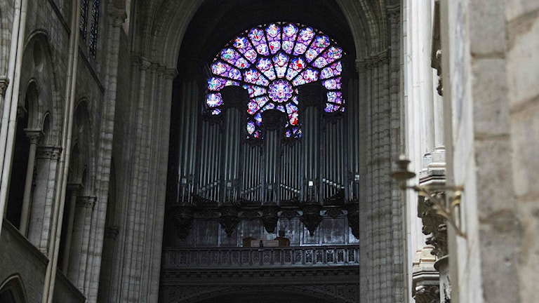Orgeln i Notre Dame-katedralen har undersökts och verkar ha klarat branden utan skador.