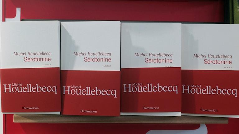 Michel Houellebecqs nya roman Sérotonine