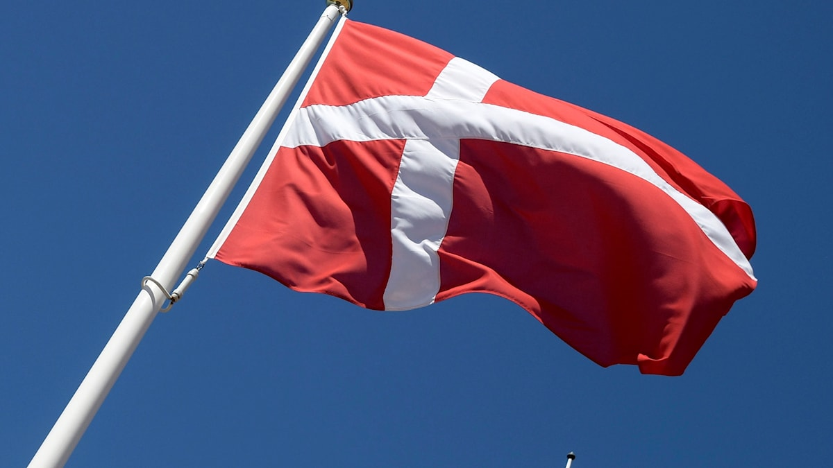 Danmarks flagga dansk flagga