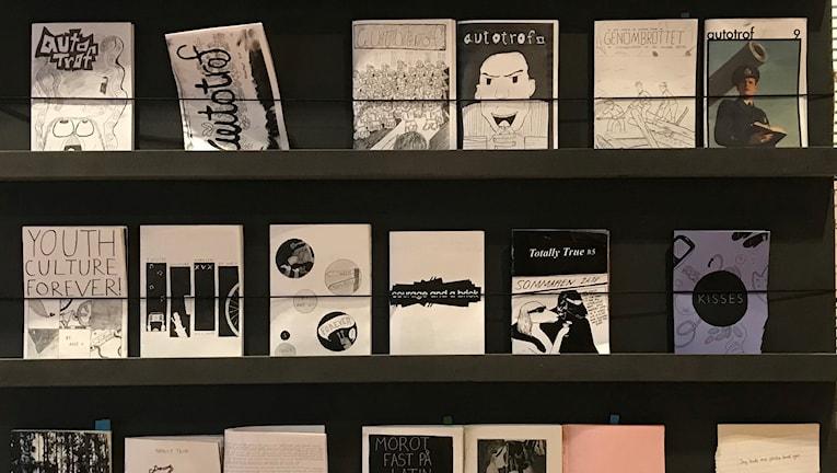 Konstfrämjandet i Västerbottens samling av fanzines.