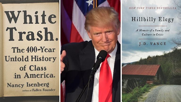 Under året har flera böcker som försökt nyansera den vita arbetarklassen i USA legat på topplistorna.