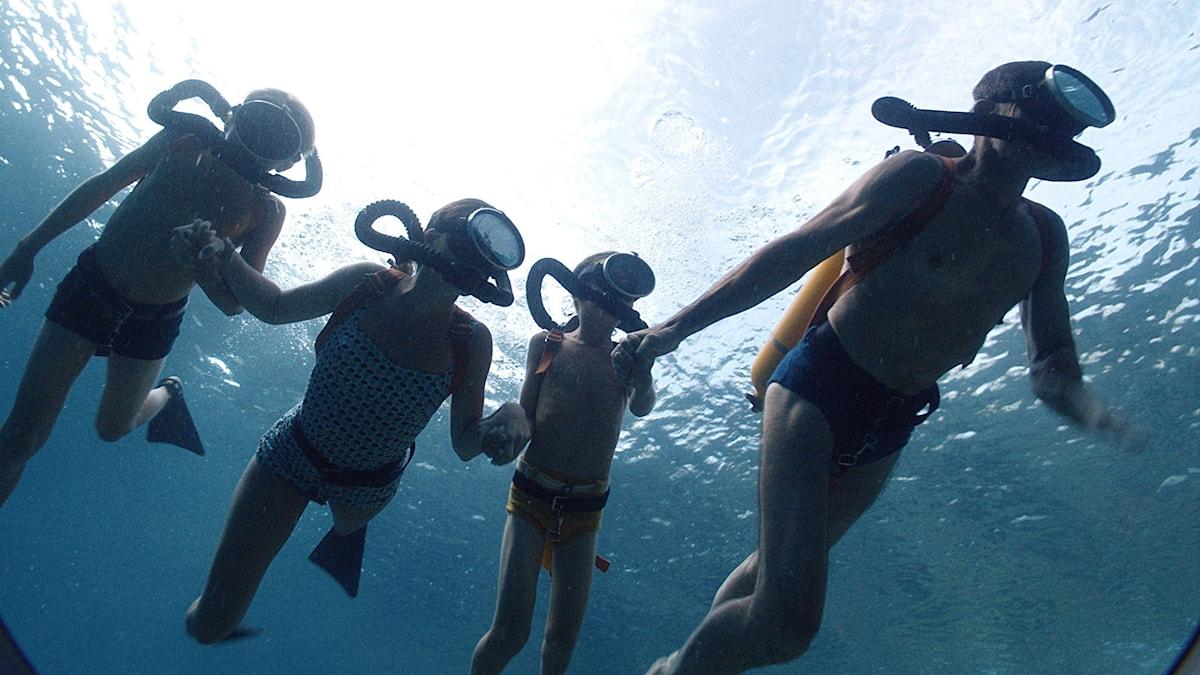 Hela familjen Cousteau undersöker havsdjupen.