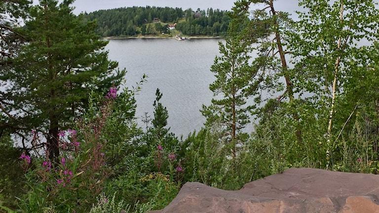 Här, med utsikt över Utøya, vill grannar skapa en minnesplats som de menar inte skulle störa någon. Men staten vill inte utreda detta som ett alternativ.