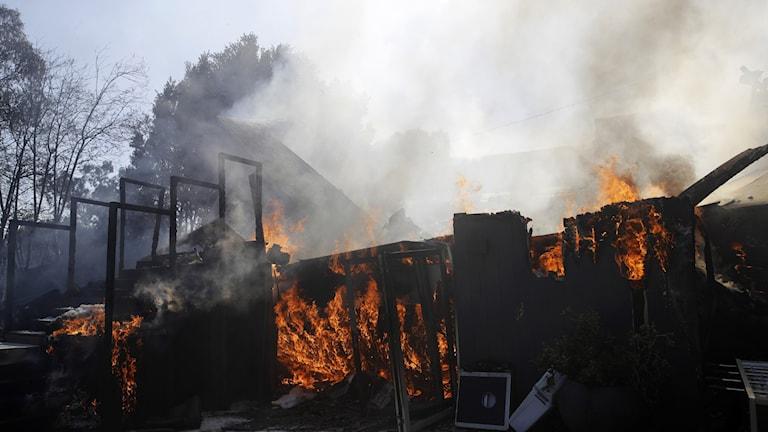 Staket och delar av byggnader som brunnit i Los Angeles.