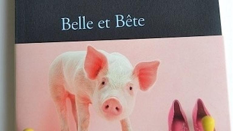 Marcela-Lacub-Belle-et-bete-347x330