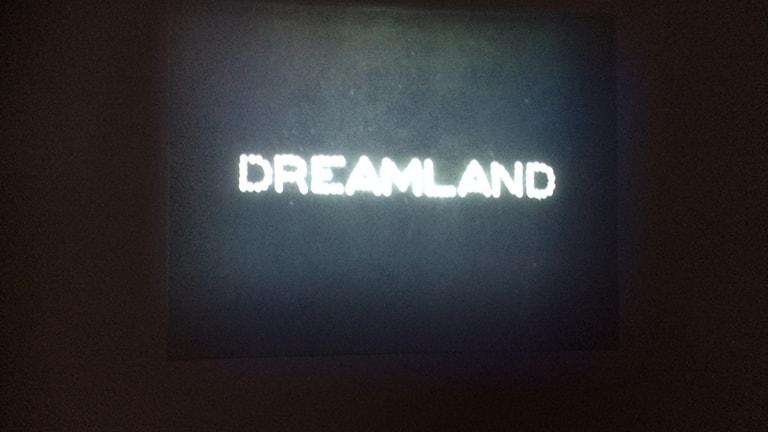 """Från utställningen """"Dreamlands"""" i New York"""
