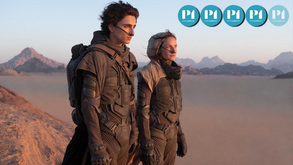 Två personer i bruna kläder står i ett ökenlandskap och tittar mot horisonten.