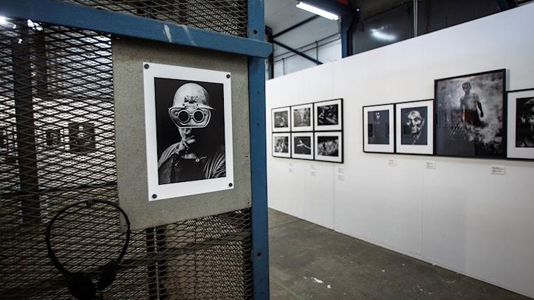 Jean Hermanson utställning Bästekille