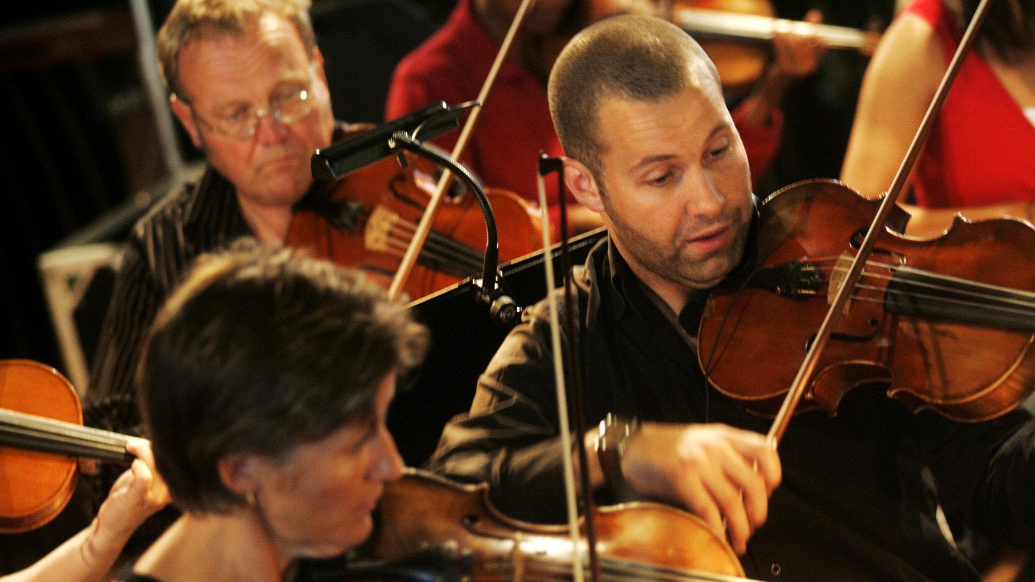 Violinister på Östersjöfestivalen.