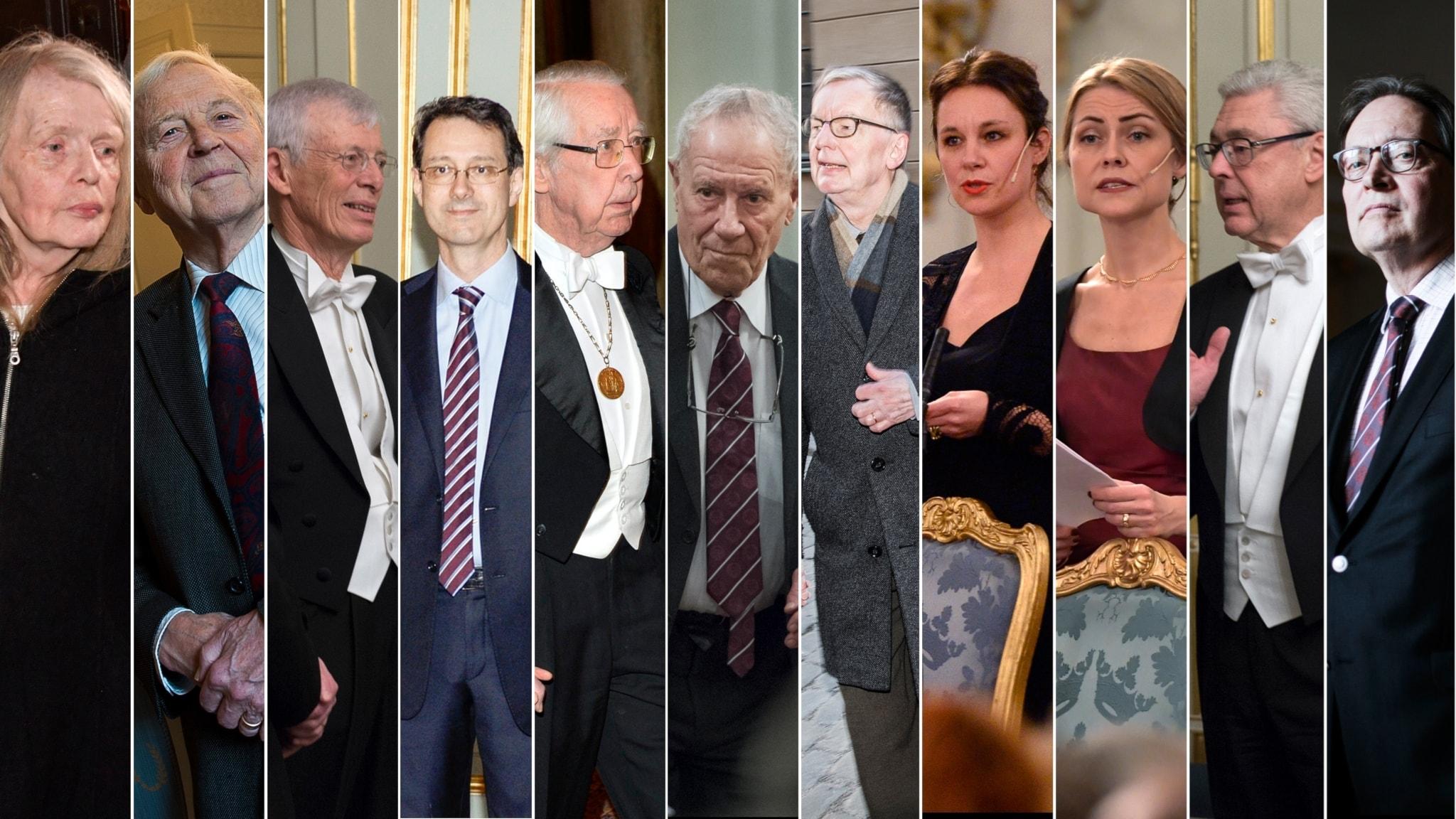 Forskare i upprop mot Svenska Akademien och Hanna Järvers debut