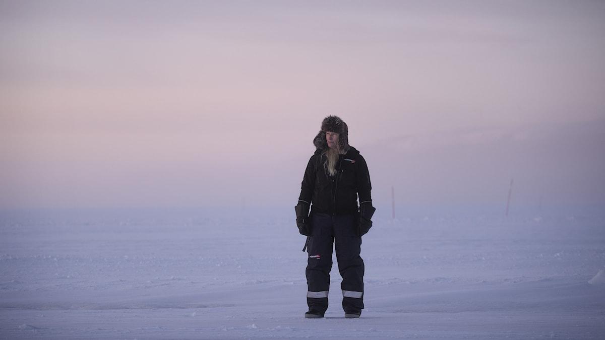 """Bild från utställningen """"Arktis – medan isen smälter"""""""