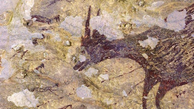 Världens äldsta konstverk, Indonesien, grotta