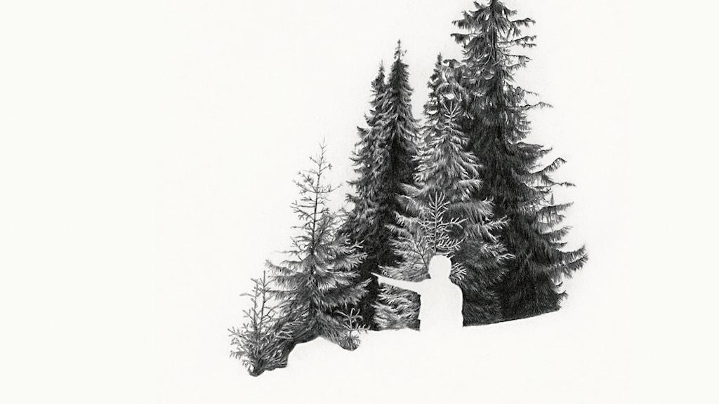 "Ann Böttcher: ""Pekar genom en tysk skog"", blyerts på papper, 2002 (beskuren)"