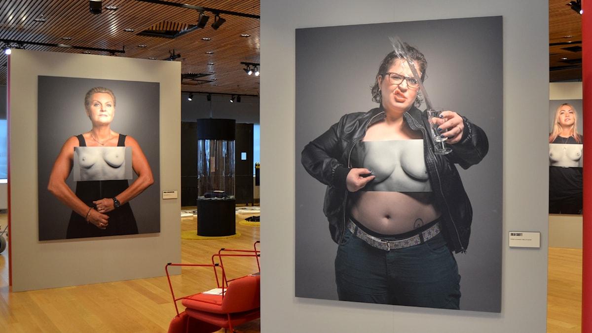Bröstbilder på Kvinnohistoriskt museum i Umeå. Foto: Peter Öberg, Sveriges Radio.