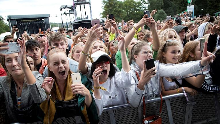 Bild på festivalpublik.