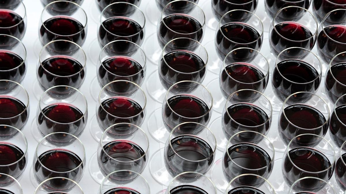 Vin eller inte på vernissage? De svenska statliga museerna hanterar frågan olika visar Kulturnytts genomgång. Foto: Vidar Ruud/TT