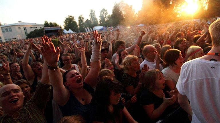 Publiken ljublar under en festivalkonsert.