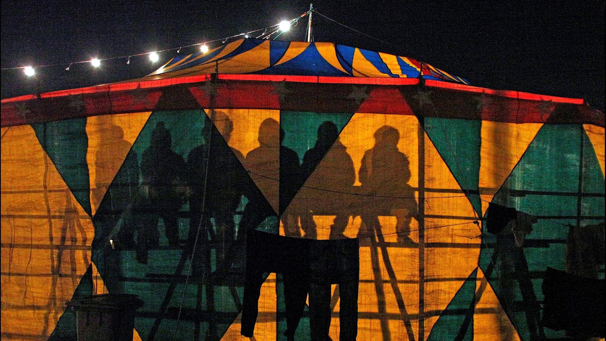Cirkusbranschen i internationellt upprop