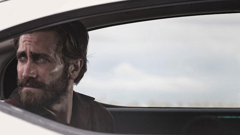 "Jake Gyllenhaal i Tom Fords ""Nocturnal animals""."