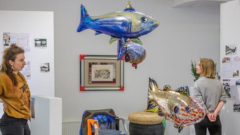 Philippe Parrenos fiskar inne i Bernd Krauss installation
