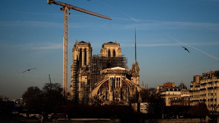 Notre-Dame-katerdralen i Paris, januari 2020.