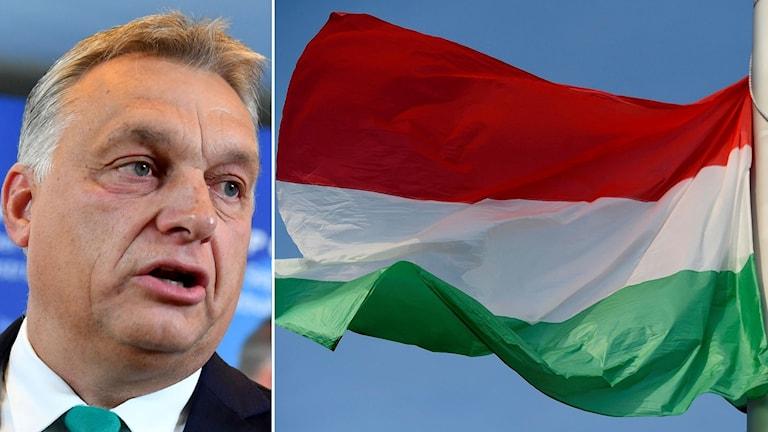 Viktor Orbán och ungerska flaggan.