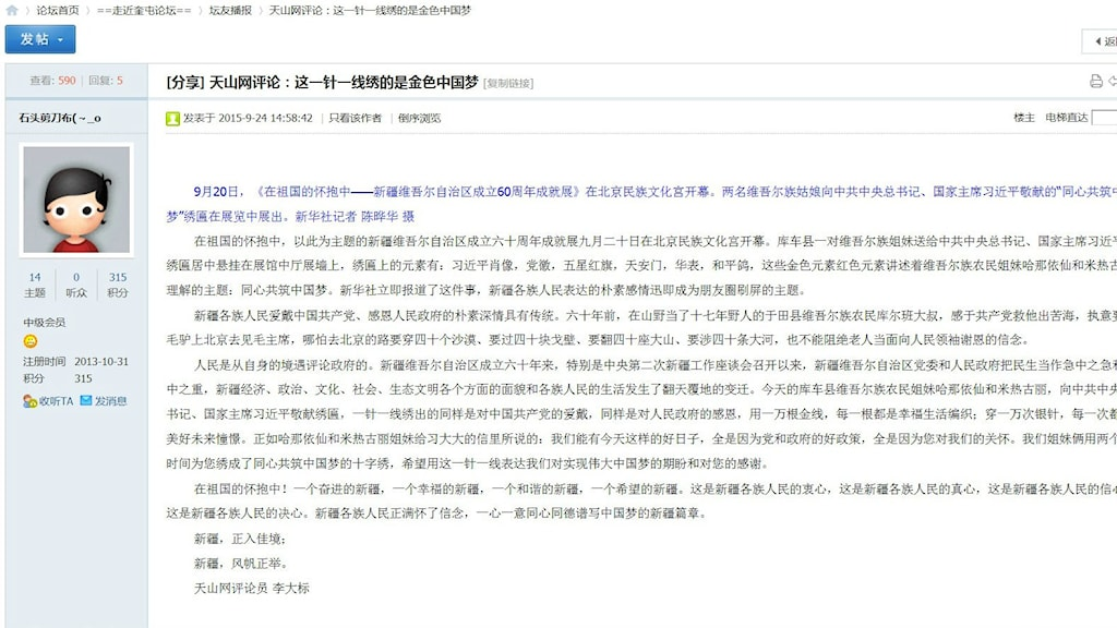 Kinesisk nätpropaganda på forum
