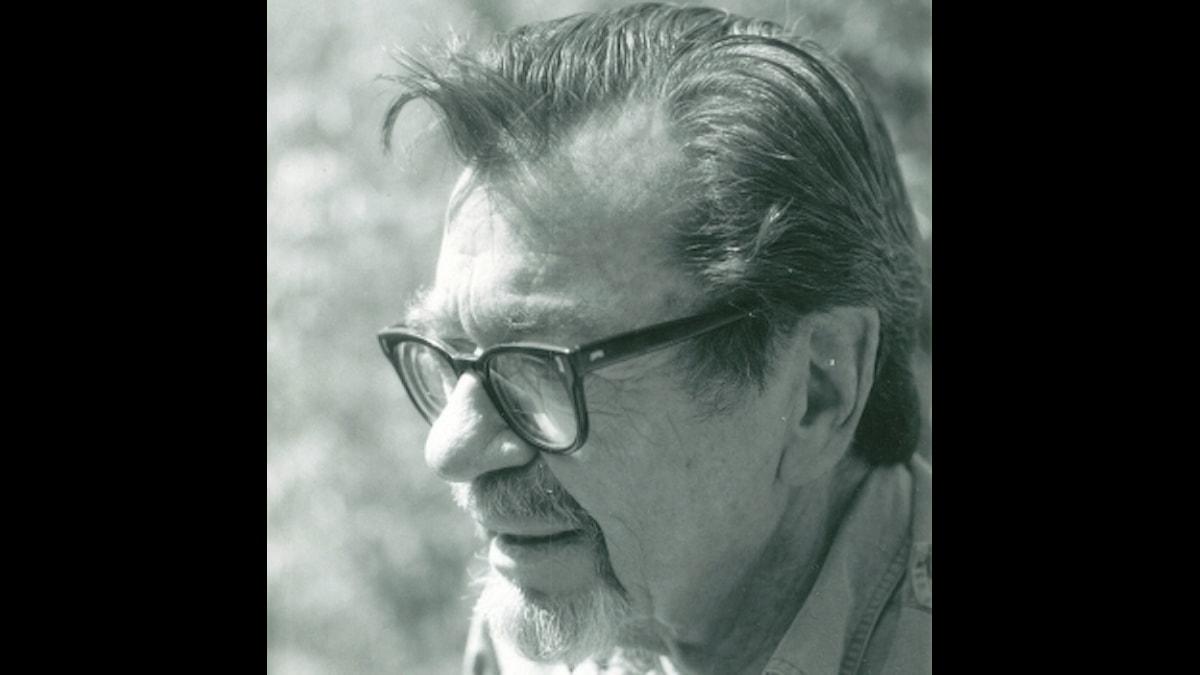 Författaren John Williams