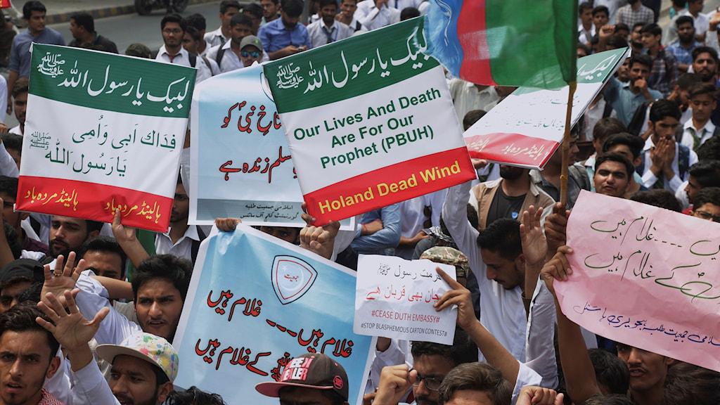 Demonstranter i Lahore, Pakistan, som protesterar mot att den högerpopulistiske politikern Geert Wilders utlyst en tävling för Mohammed-karikatyrer.