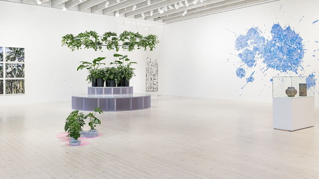 Bild från utställningen Markkontroll på Bildmuseet