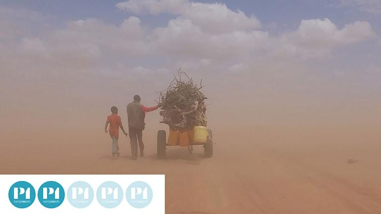 """Ai Weiwei skildrar flyktingkrisen """"högt ovanifrån, ständigt på väg"""""""