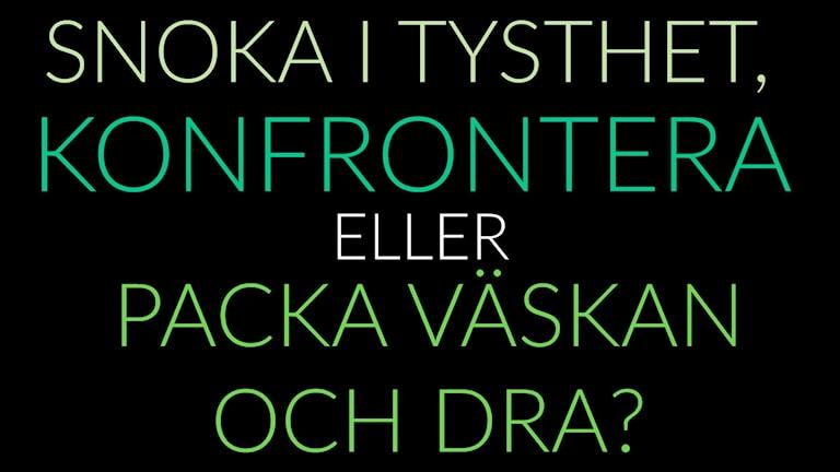 """Grafik där det står """"Snoka i tysthet, konfrontera eller packa väskan och dra?"""". Grafik: Emma Leyman/SR"""