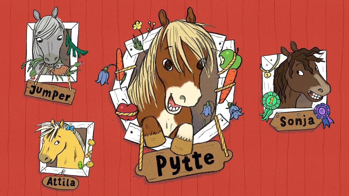 Ponnyn Pytte. Bild och text: Ingrid Flygare