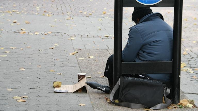 tiggare sedd bakifrån Foto: Ida Wendle / Sveriges Radio