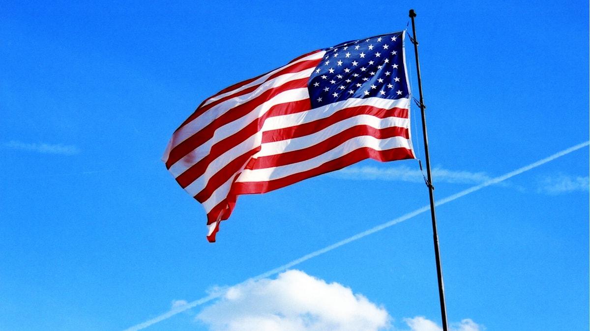 Amerikansk flagga Foto: lucianvenutian https://flic.kr/p/CLVxg (CC BY-SA 2.0)