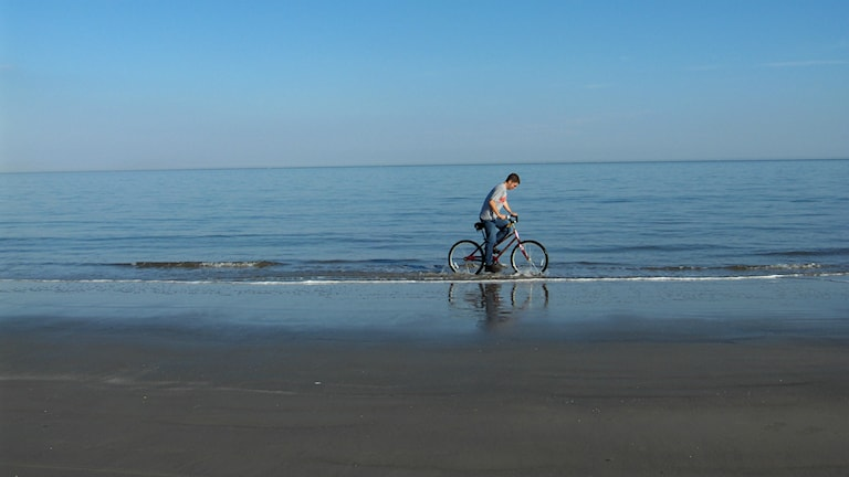 Ensam på stranden Foto: Joe Shlabotnik https://flic.kr/p/dWFqE (CC BY 2.0)