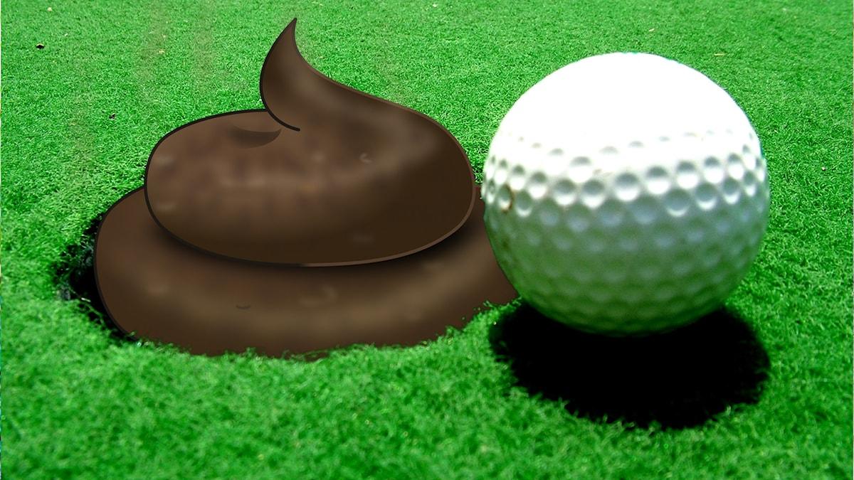 Bajs i golfkopp