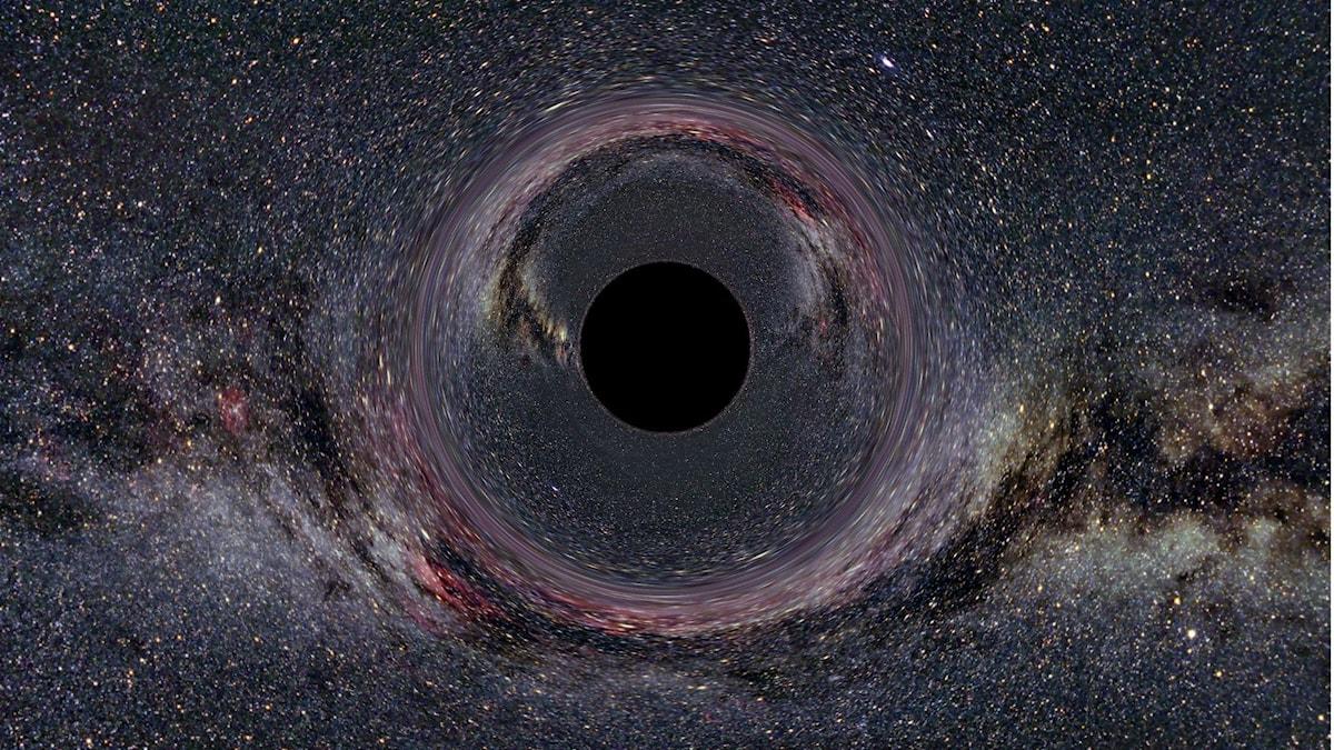 Black Hole - Ute Kraus Universität Hildesheim