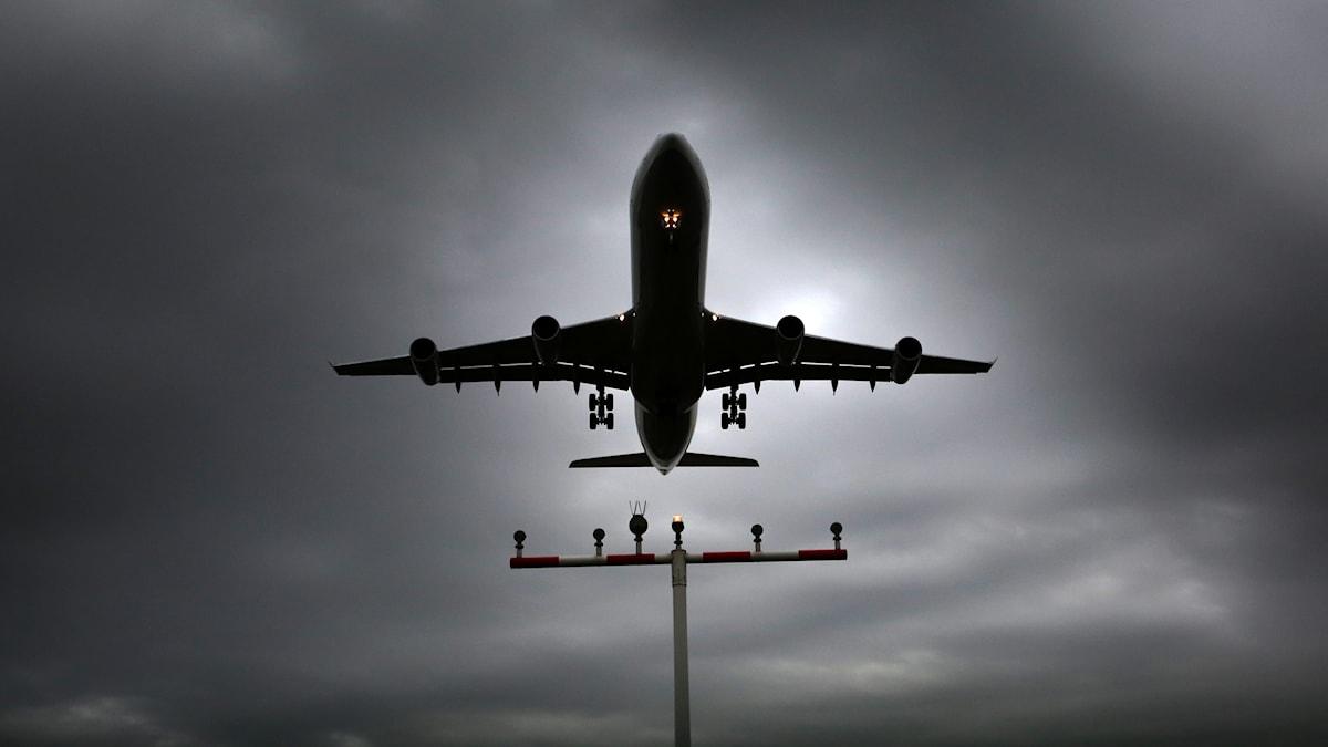 Flygplan i luften. Foto: Fredrik Von Erichsen/TT