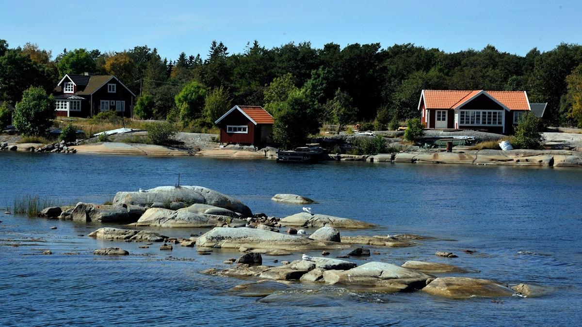 Fredrik åker på näthatsrehab i skärgården. Foto: Hasse Holmberg / TT