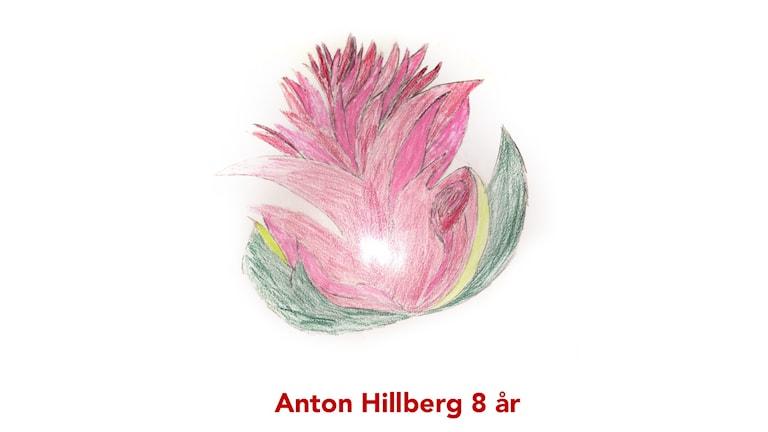 Frimärke. Illustration: Anton Hillberg, 8 år