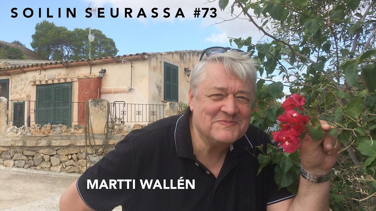 Martti Wallén