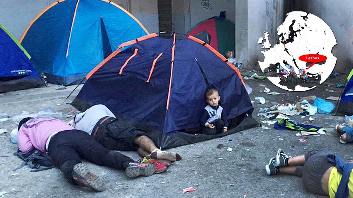 Tältläger för flyktingar i Lesbos. Foto: Johanna Melén/Sveriges Radio.