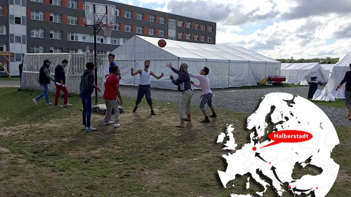 Flyktingar spelar basket i flyktingläger i Halberstadt. Foto: Daniela Marquardt/Sveriges Radio.