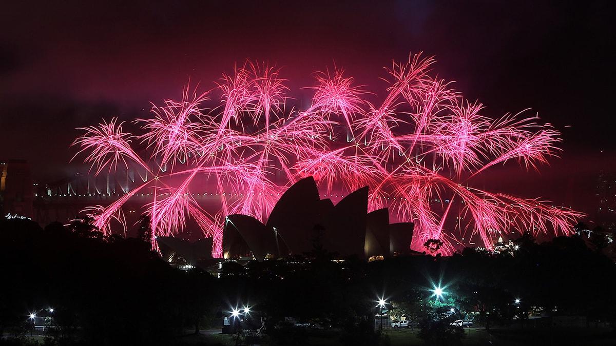 Kuvassa etualalla mustana shiluettina Sydneyn oopperatalo, taustalla valtavan kokoinen  vaaleanpunainen ilotulitesade.