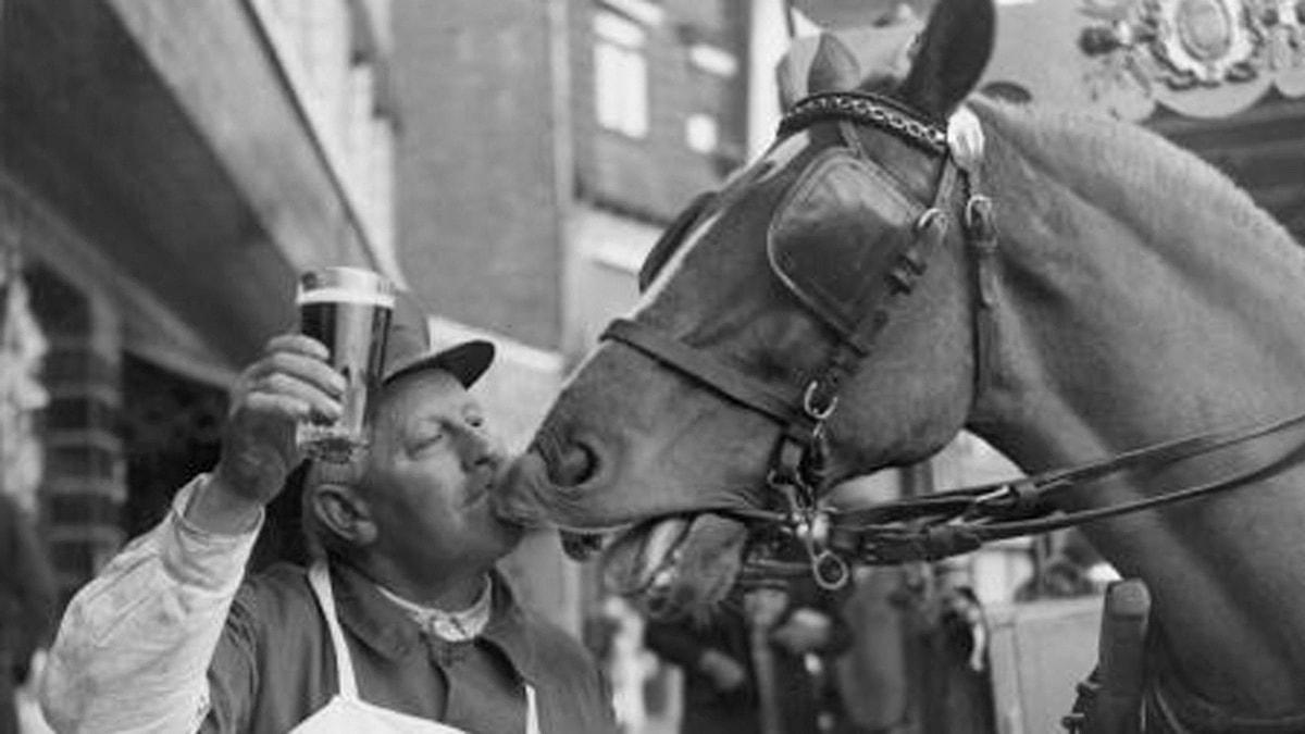 Kaljakuskin hevonen