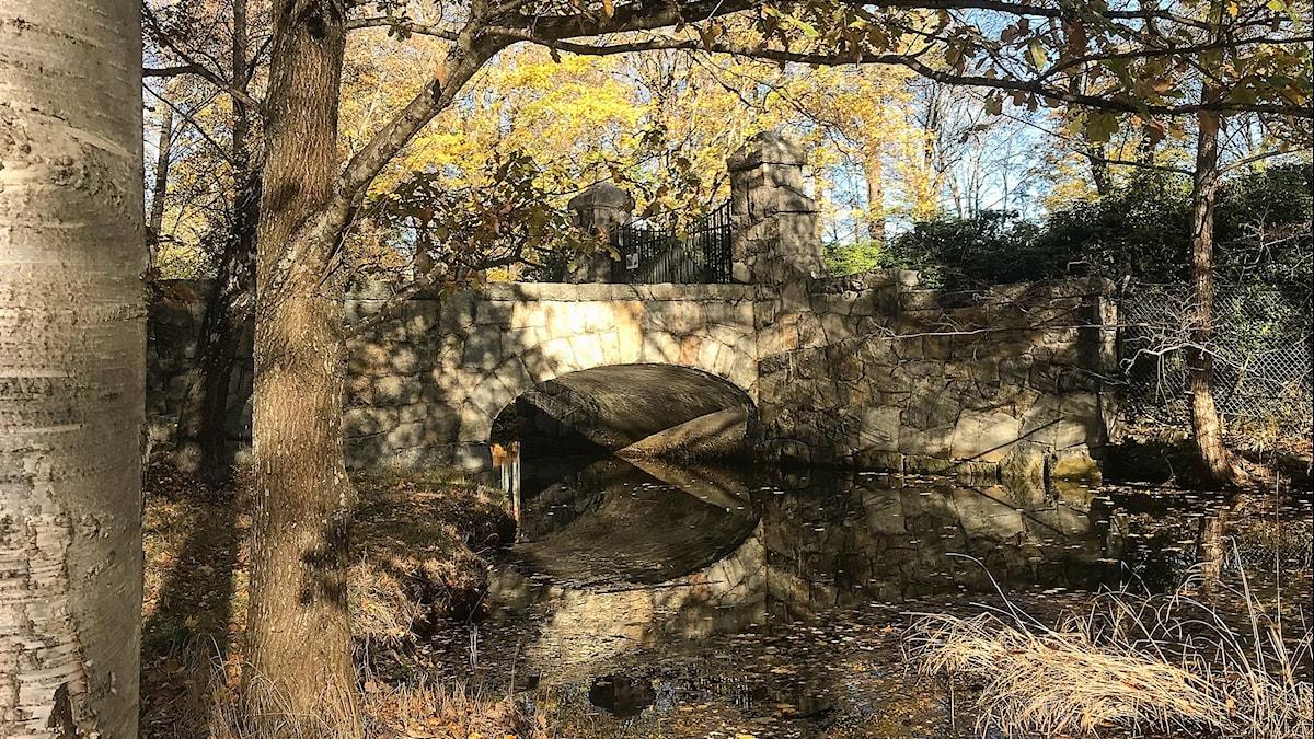 Kaipuuta käsittelevässä laulusssa on usein silta.