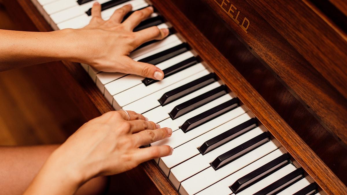 Kuvassa on kädet jotka soittavat pianon koskettimia.