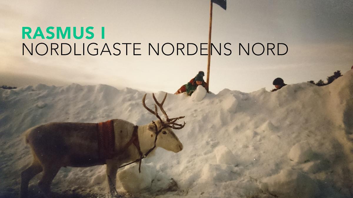 Rasmus i norr