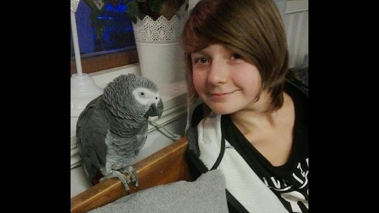 Alex men sin papegoja Chico